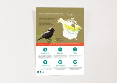 Audubon poster