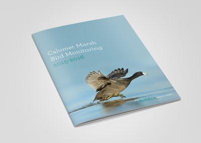 Audubon rapport