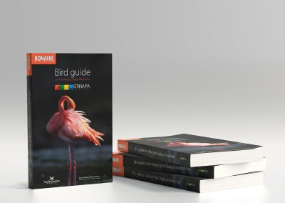 Bonaire bird guidebook